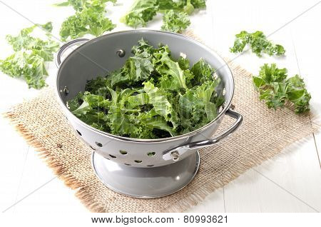 Curly Kale In A Colander