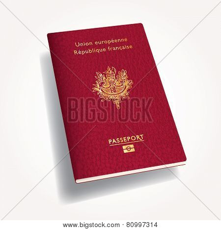 vector illustration of 3D french leather passport
