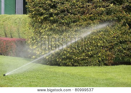 Irrigation System Watering The Garden Automatically