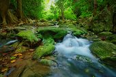 stock photo of waterfalls  - waterfalls in deep forest natural green background - JPG