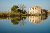 pic of farmhouse  - Old farmhouse and its reflection in Albufera lagoon Valencia Spain - JPG