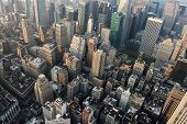 pic of empire state building  - View of Manhattan from the Empire State Building - JPG