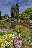 foto of plant species  - Christchurch Botanical Gardens New Zealand is the home of this beautiful rock garden established in 1868 the garden mixes native forest with planted species - JPG