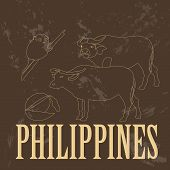 pic of carabao  - Philippines - JPG