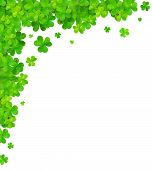 picture of clover  - Green clovers vector corner frame element isolated on white - JPG