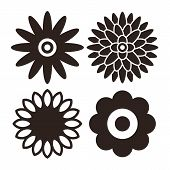 stock photo of daisy flower  - Flower icon set  - JPG