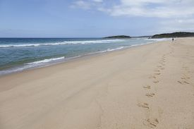 picture of inlet  - Beach at the Mallacoota Inlet - JPG