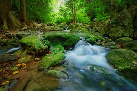 foto of deep  - waterfalls in deep forest natural green background - JPG
