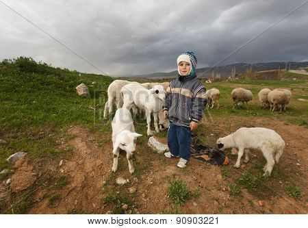 Shepherd Boy In Rural Anatolia
