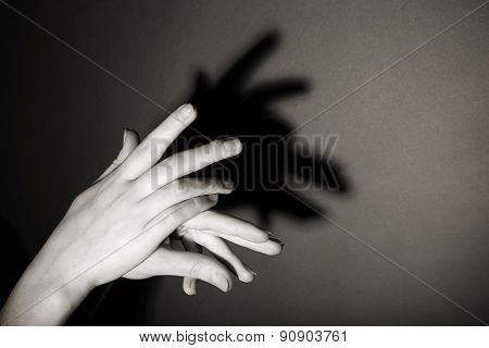 Hands gesture like goat on gray background