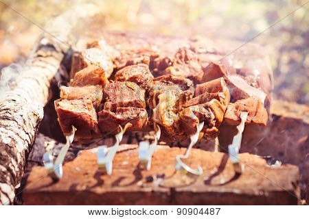 Grilled Meat mutton kebab barbecue healthy organic fresh food