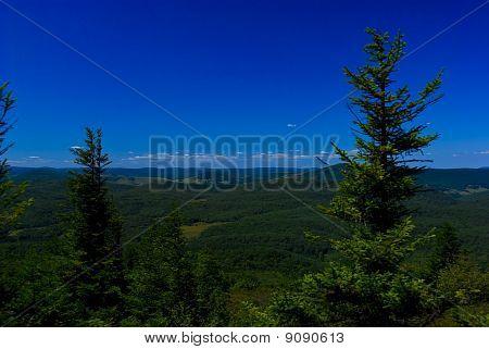 Overlook Spruce Knob