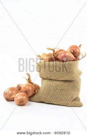 French Shallots In Burlap Bag.