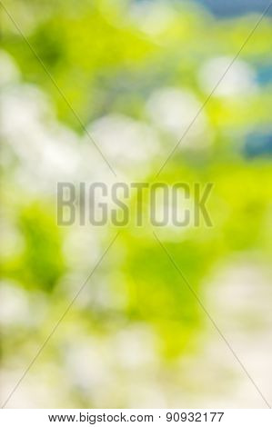Bright Abstract Background With Soft Colored Spots