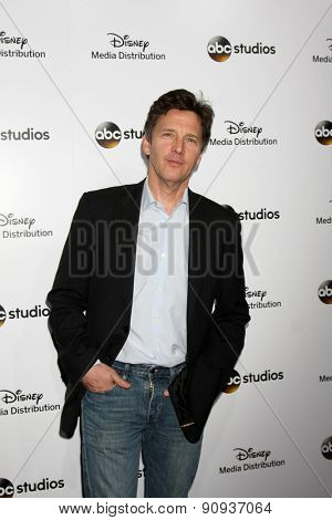 LOS ANGELES - MAY 17:  Andrew McCarthy at the ABC International Upfronts 2015 at the Disney Studios on May 17, 2015 in Burbank, CA