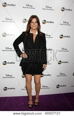LOS ANGELES - MAY 17:  Marcia Gay Harden at the ABC International Upfronts 2015 at the Disney Studios on May 17, 2015 in Burbank, CA