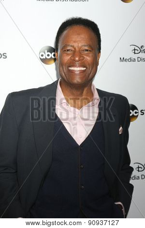 LOS ANGELES - MAY 17:  WIlliam Allen Young at the ABC International Upfronts 2015 at the Disney Studios on May 17, 2015 in Burbank, CA