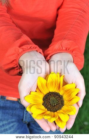 Young Woman Hands With Flowers Outdoor