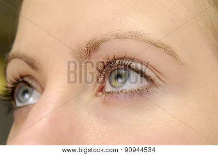 Womans' Eye