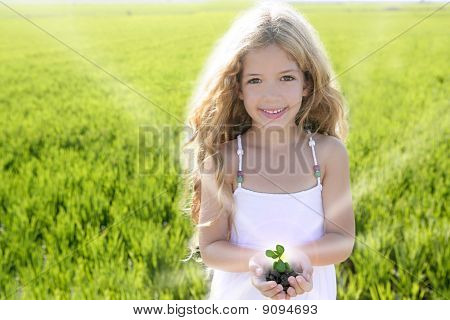 Sprout Plant Growing From Little Girl Hands Outdoo