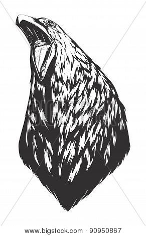 Vector Illustration With Crow Head