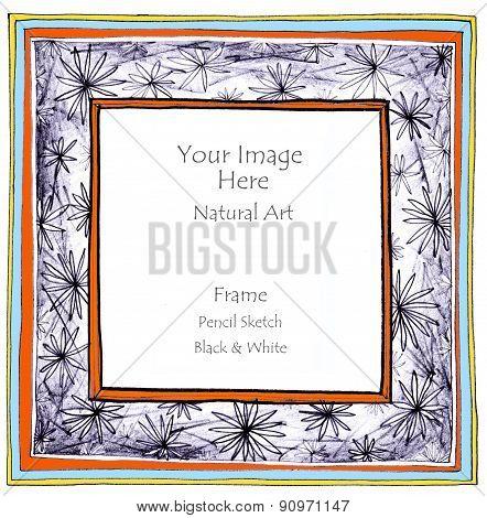 Flower Star Pencil Sketch Picture Frame Color
