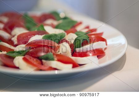 Plate With Mozarella And Tomato