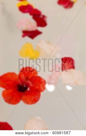 Flower Petals In Jacuzzi