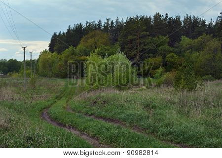 Rural Road On The Edge Of  Forest.