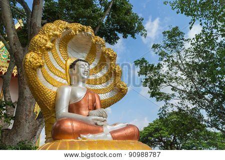 Buddha satue sitting with king of naga