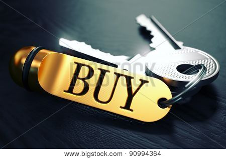 BUY Concept. Keys with Golden Keyring.