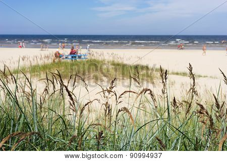 The Sandy Beach Of The Baltic Sea On A Summer Day Season