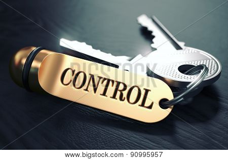 Control - Bunch of Keys with Text on Golden Keychain.