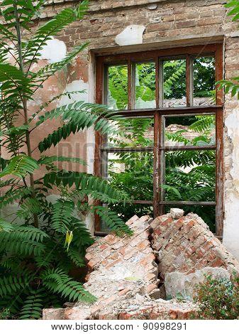 Abandoned Brick House Closeup