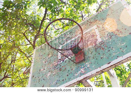 basketball vintage basket