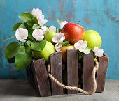 foto of wooden crate  - Fresh apples with apple blossom in crate - JPG