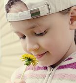 picture of pullovers  - the girl of nine years in a baseball cap and a pullover looks at a yellow flower of a dandelion - JPG