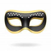 picture of mardi gras mask  - The vector illustration of a carnival mask - JPG