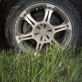 foto of marsh grass  - Closeup of a car wheel stuck in the grass selective focus in the foreground  - JPG