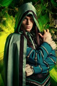 pic of fairies  - Noble fairy elf in the magic forest - JPG