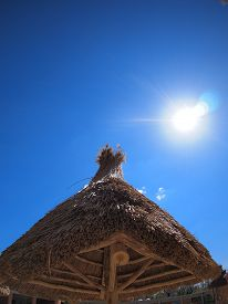 image of canopy roof  - Roof of reeds against a blue sky and bright sun - JPG