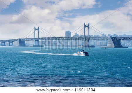 Gwangan Bridge And Speed Boat In Busan,korea
