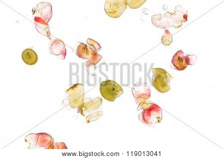 A Few Grapes Smashed On A Pane