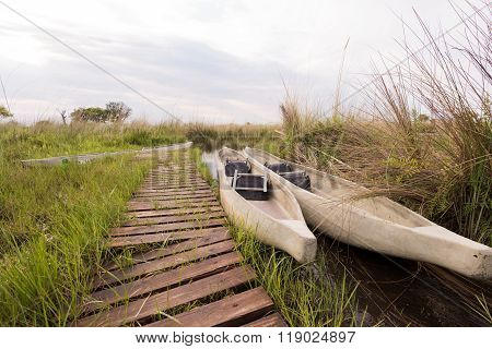 Makoros By Dock In Okavango Delta