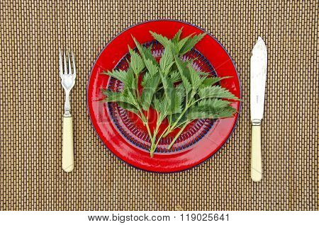 Fresh Spring Nettles In A Plate