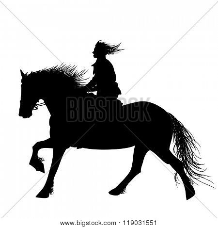 A horse rider isolated silhouette, vector illustration