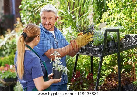 Young woman doing gardener apprenticeship in a nursery shop