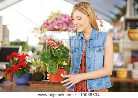 Woman buying pot with begonia in nursery of a garden center