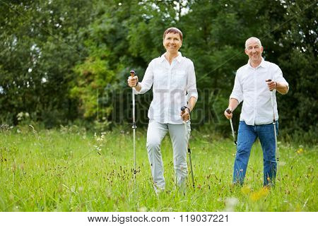 Active senior couple doing nordic walking in summer on a meadow