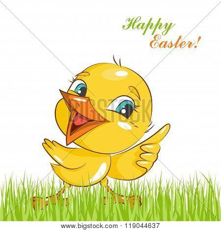 Happy Easter! Little chicken.
